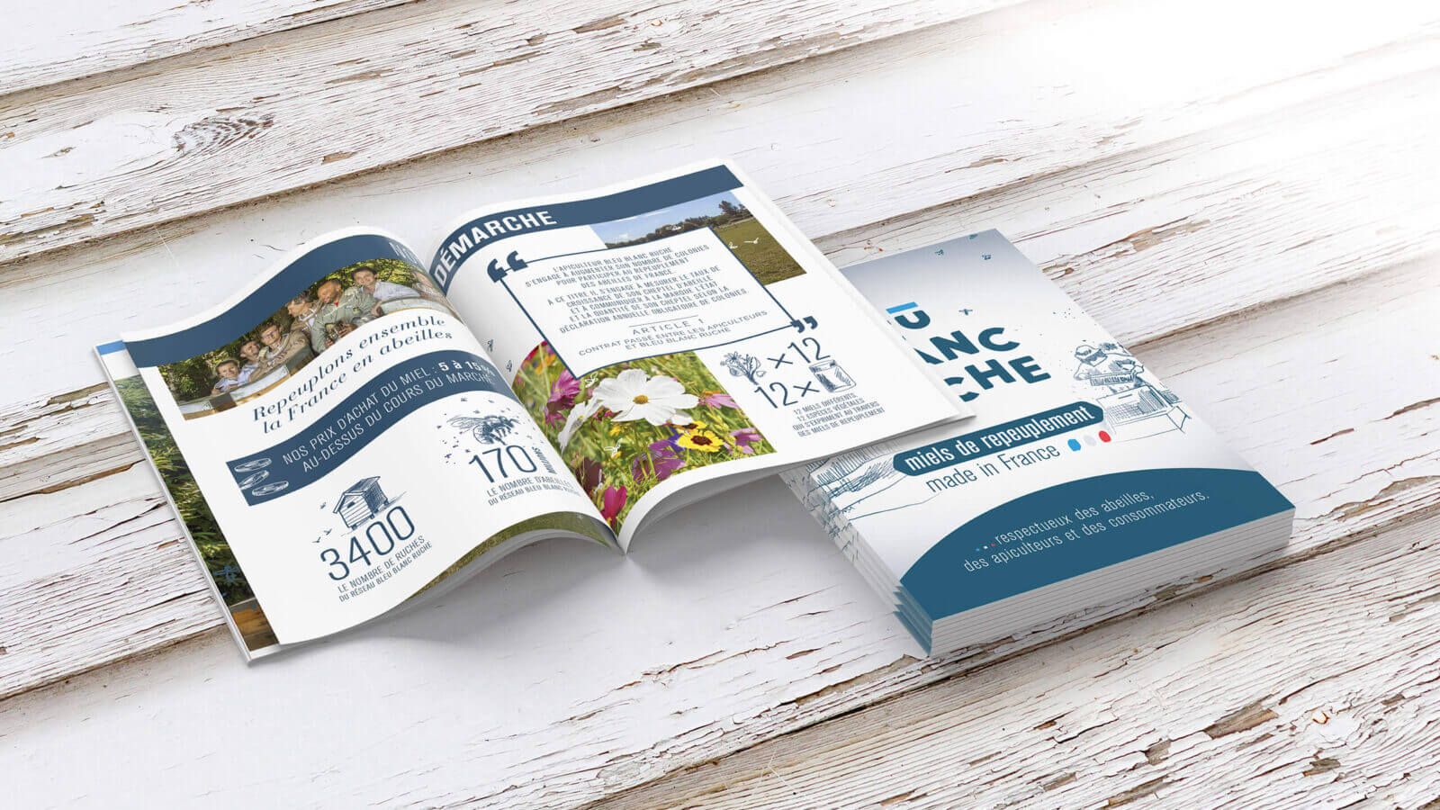 support de communication brochure Bleu Blanc Ruche