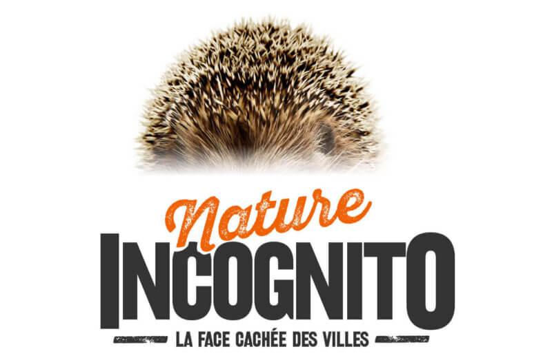 création affiche évènementielle pour le jardin des sciences à Dijon