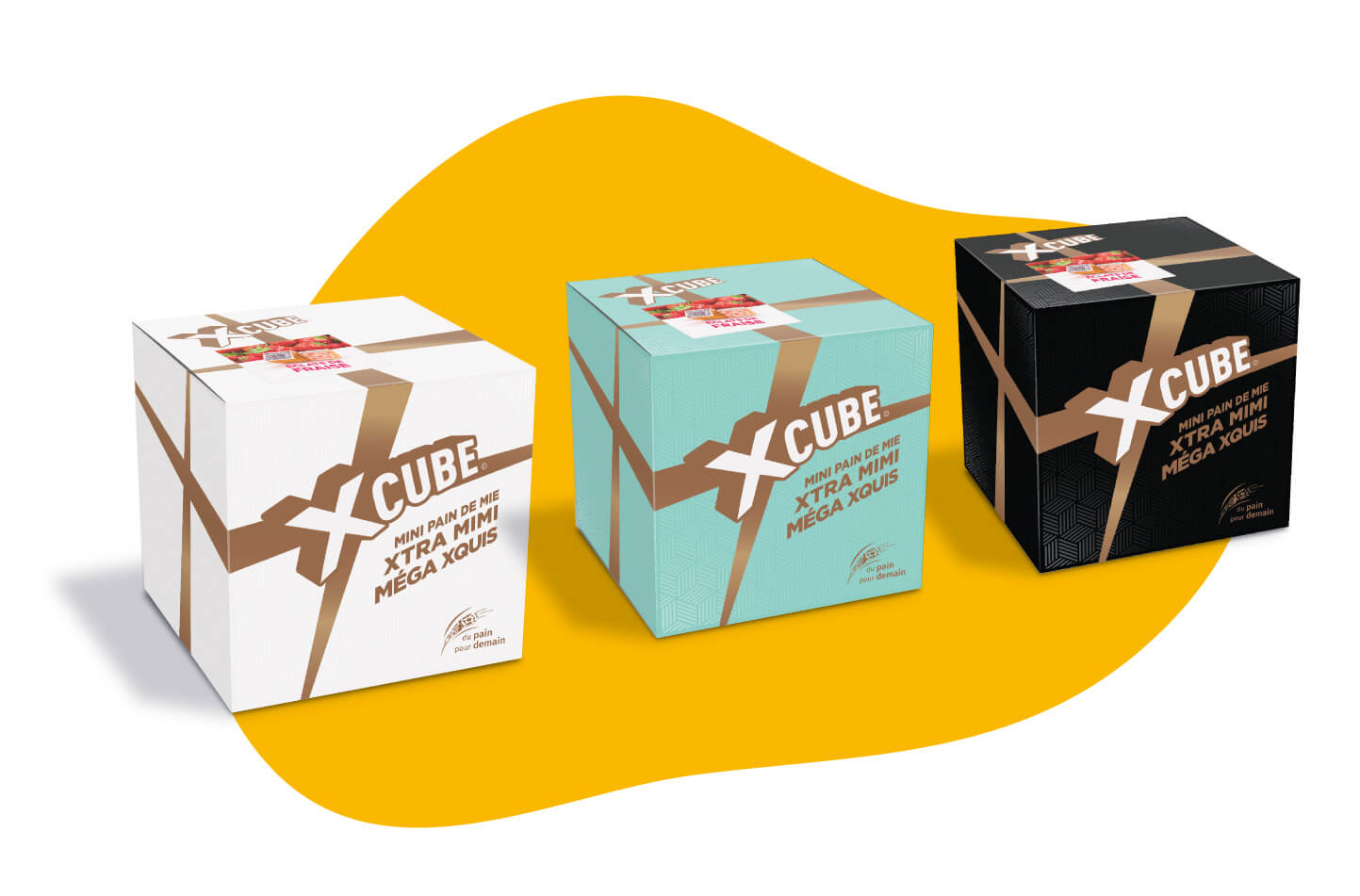 design packaging x-cube